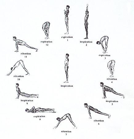 yoga-science-de-vie-Salutation au Soleil